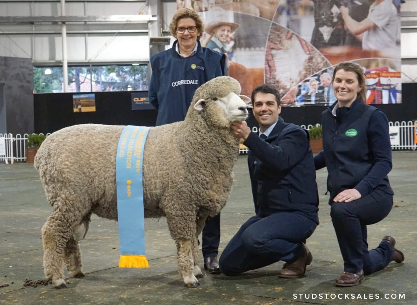 2019%20SUPRME%20SHEEP%20ROYAL%20MELBOURNE%20SHOW.JPG