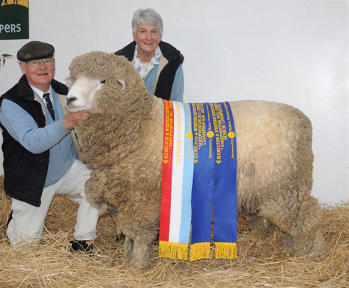2012-HAMILTON-SHEEP-SHOW-GRAND-CHAMPION.JPG