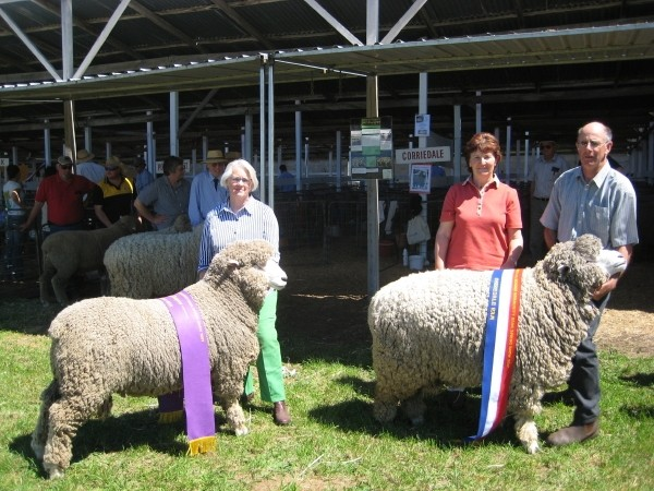 Champions - 2007  Mount Gambier Show