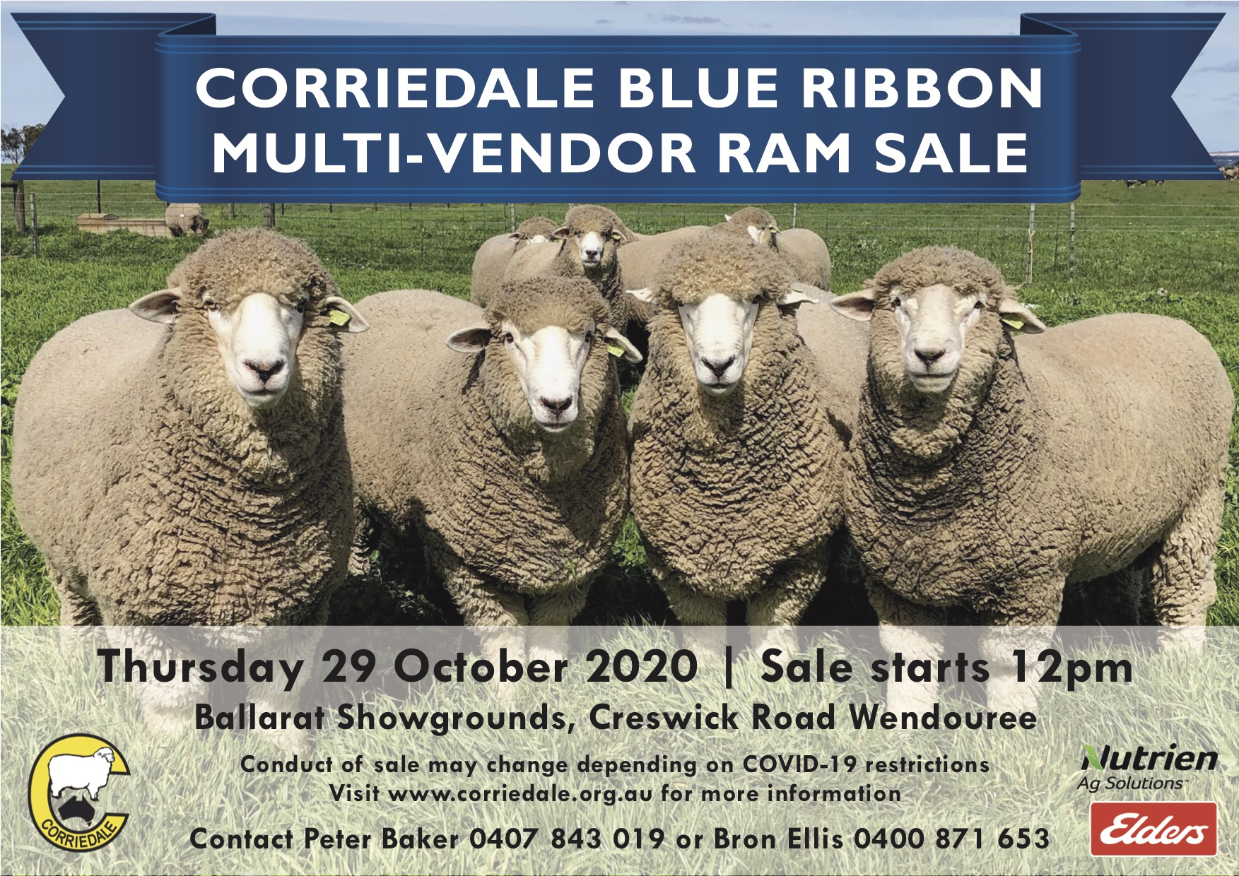 CORRIEDALE%20MULTI-VENDOR%20RAM%20SALE%202020.JPG